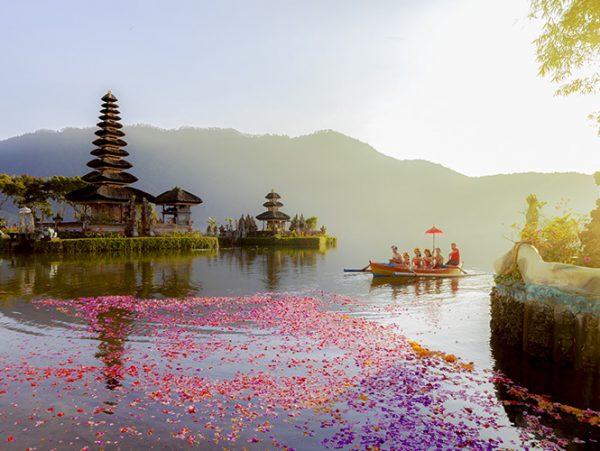 paysage nature Bali