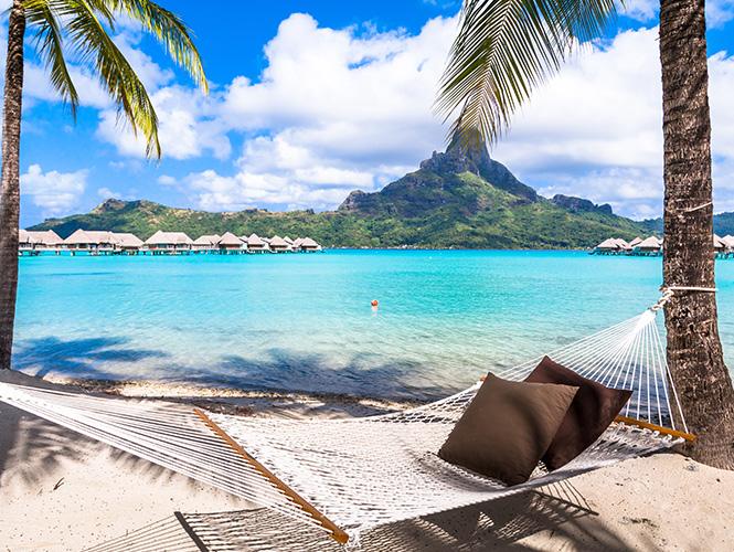 hamac sur plage paradisiaque