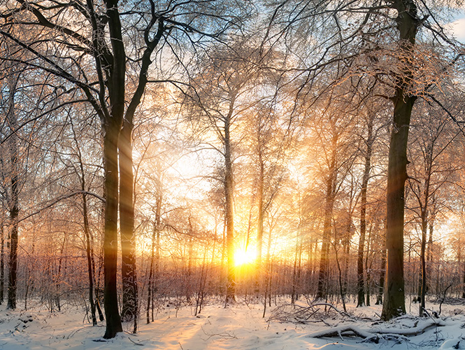 lever de soleil apaisant en hiver